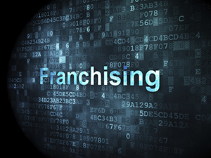 Franchise Attorney Wake Forest NC